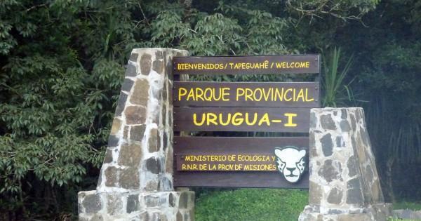 Falta Uno: la campaña de Banco de Bosques para ampliar el Parque Provincial  Urugua-i en Misiones - Carbono News
